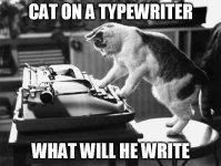 cat-typewriter.jpg